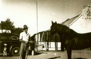 Gidgee and Grit: a history of Loves Creek Station and Ross River Homestead, Central Australia