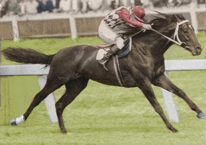 70 years since Comic Court won the Melbourne Cup