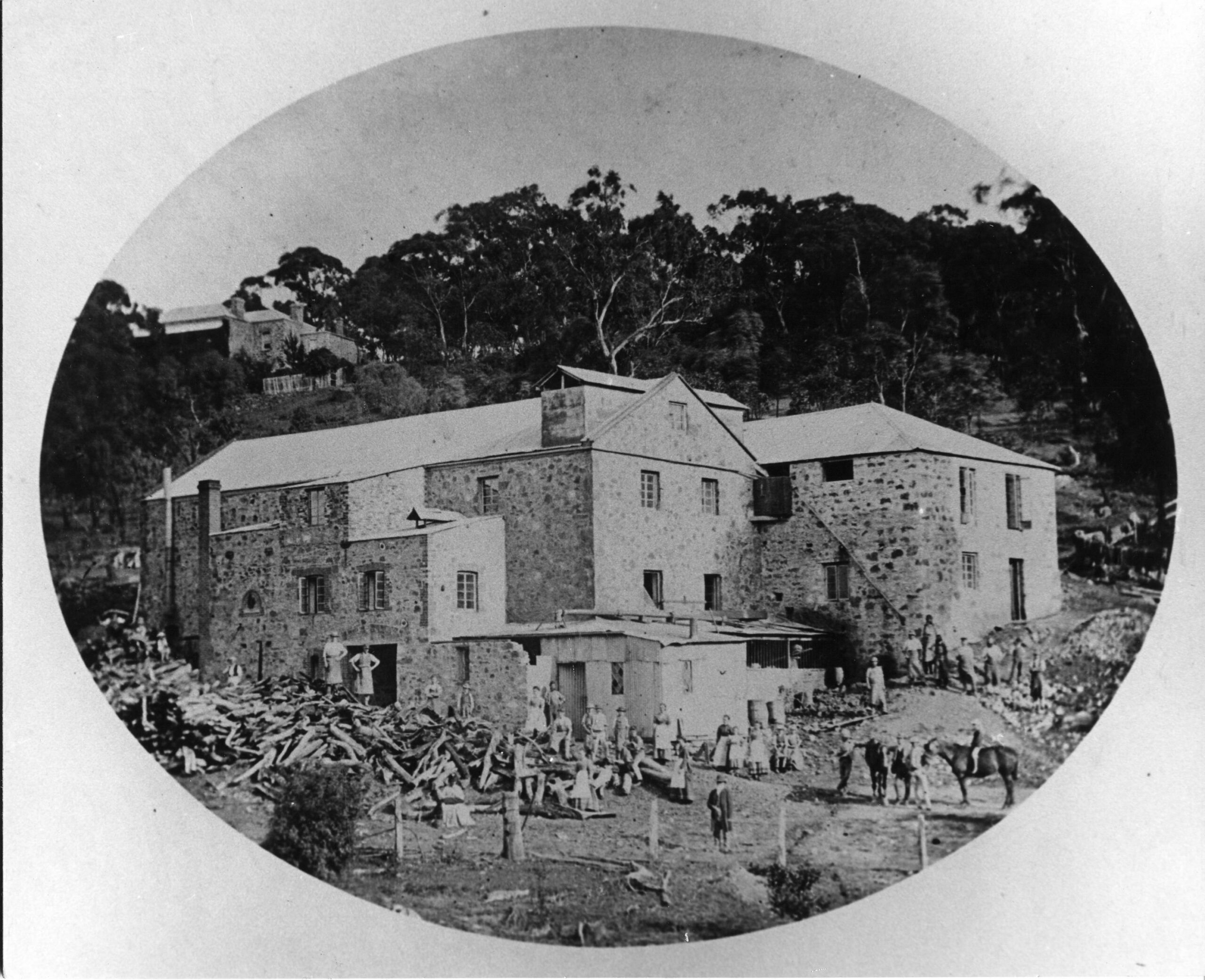 NEW BOOK out soon! The Biscuit Factory: Hidden history in Coromandel Valley